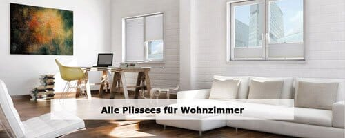 Wohnzimmer Plissees